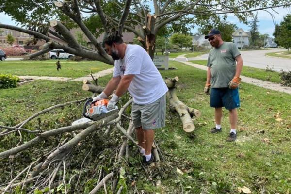 Derecho tree down